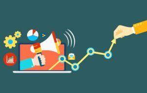 Branding Impacts on SEO and ROI - Bindura Digital
